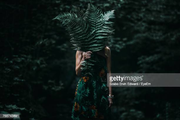 woman covering face with leaves while standing in forest - hiding stock pictures, royalty-free photos & images