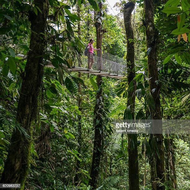Woman crosses hanging bridge above jungle
