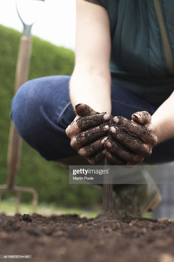Woman crouching in field, pouring soil with cupped hands, low section : Stock Photo