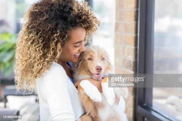 vrouw knuffels schattig puppy - australische herder stockfoto's en -beelden