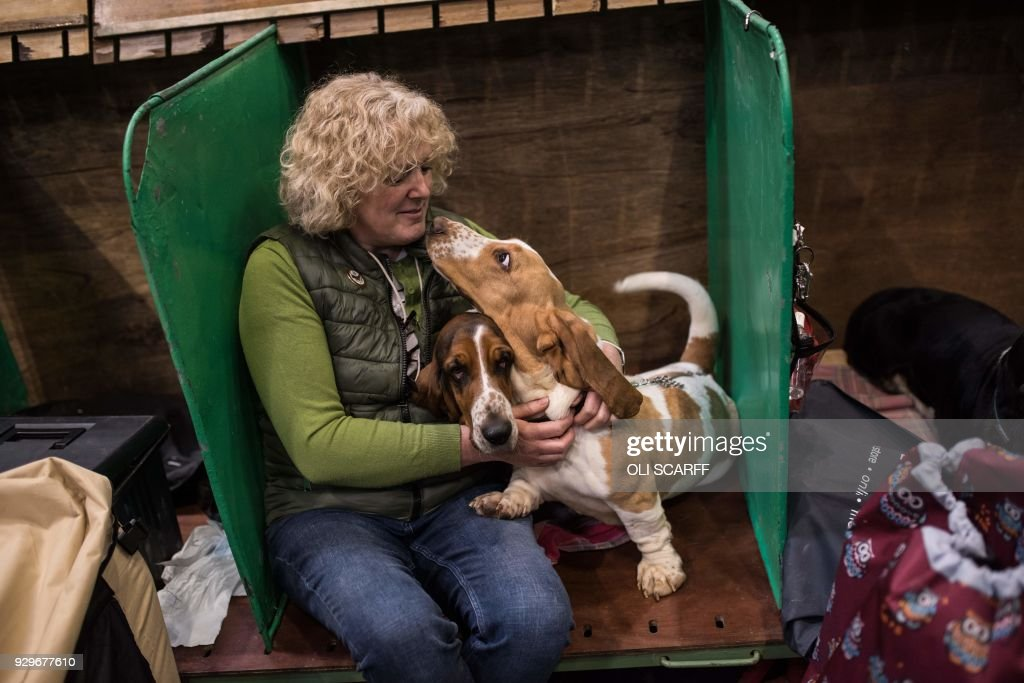 A woman cuddles her Basset Hounds in their pen on the second day of the Crufts dog show at the National Exhibition Centre in Birmingham, central England, on March 9, 2018. /