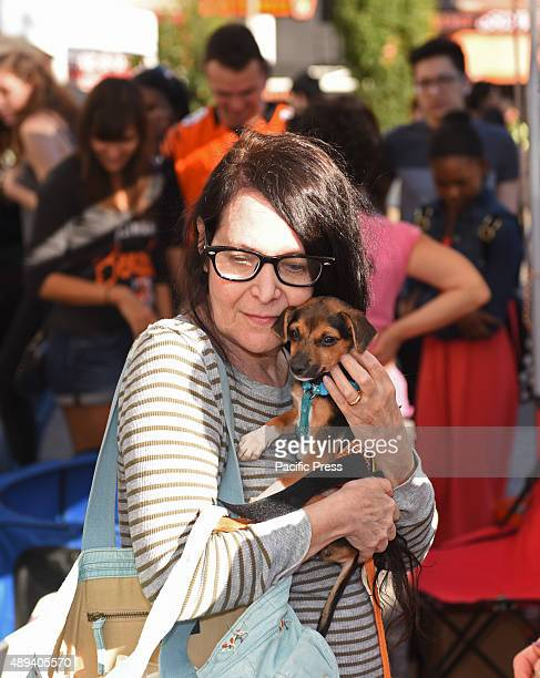 Woman cuddles tired puppy Adoptapalooza in Union Square Park brought numerous animal rescue organizations together under the big tent of the Mayor's...