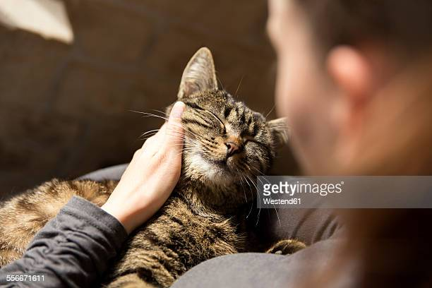woman cuddling with cat - aaien stockfoto's en -beelden