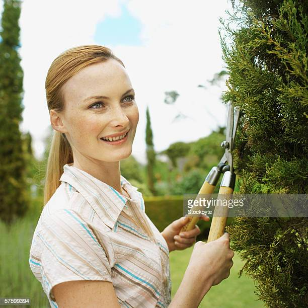 Woman cutting a tree with a hedge clippers