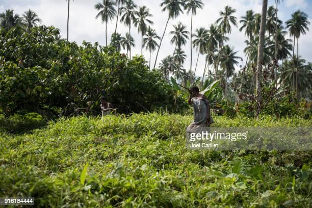 Cepillo de corte mujer con machete en Papua Nueva Guinea
