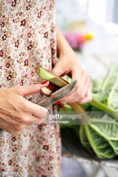 Woman cutting rhubarb