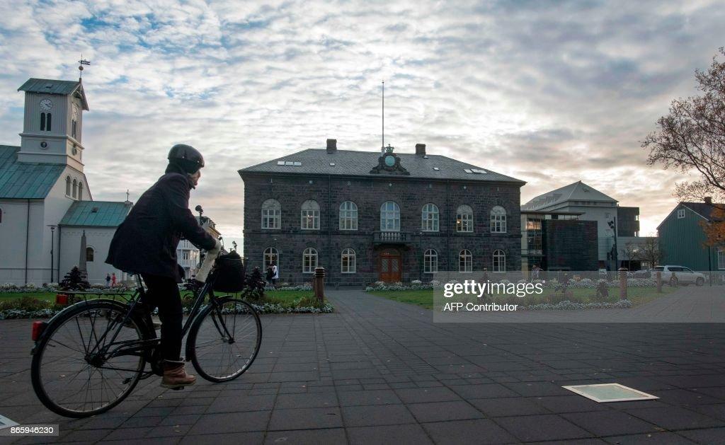 ICELAND-POLITICS-VOTE : Foto di attualità