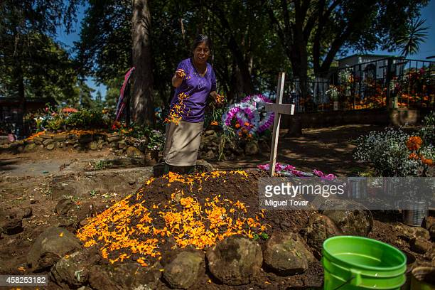 A woman decorates a grave with petals of cempasuchil in a cemetery at the outskirt of Patzcuaro which people remember those relatives and friends...