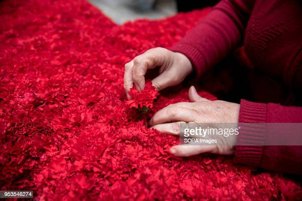 A woman decorates with red carnations a cross that will be part of an altar in the 'Día de la Cruz' in Granada El día de la Cruz or Día de las Cruces...