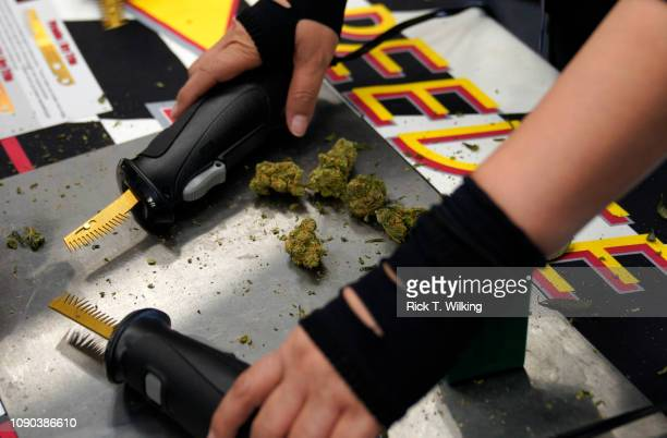 A woman demonstrates a motorized marijuana bud trimmer at the Speedee Trim booth at the INDO EXPO cannabis trade show on January 27 2019 in Denver...