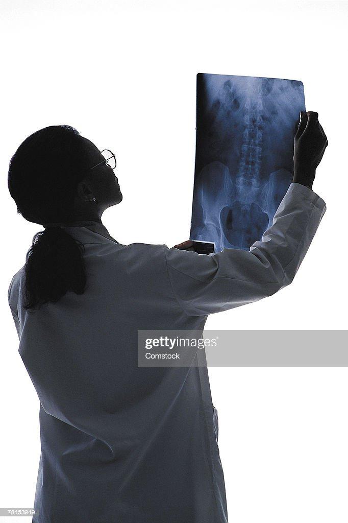 Woman doctor reading x-ray : Stockfoto
