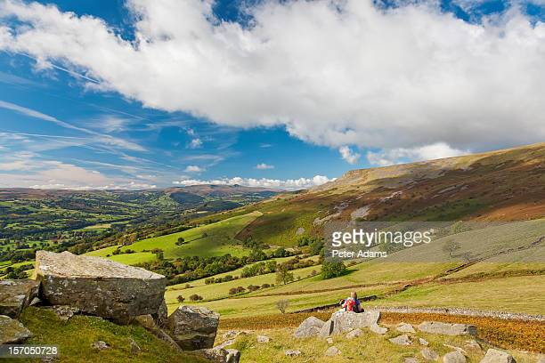 woman & dog, table mountain, crickhowell, wales - crickhowell foto e immagini stock