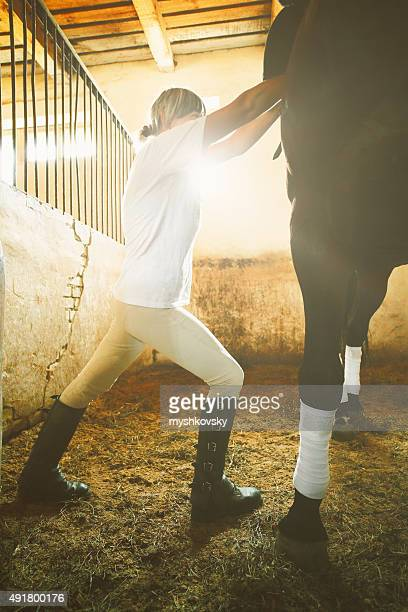 Woman doing grooming for horse in the stabling