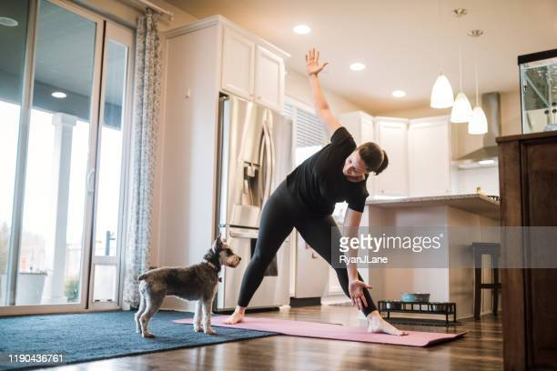 woman doing home fitness exercises with her dog - domestic life stock pictures, royalty-free photos & images