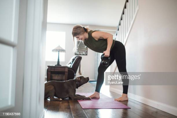 woman doing home fitness exercises with her dog - weights stock pictures, royalty-free photos & images