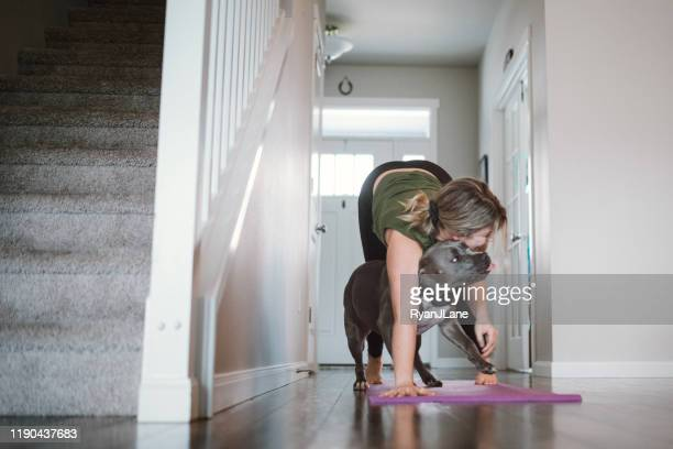 woman doing home fitness exercises with her dog - home workout stock pictures, royalty-free photos & images