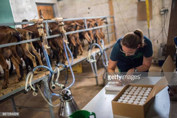 woman doing receipt entry of milk samples - milk pack stock photos and pictures