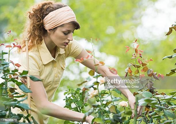 Woman doing yard work