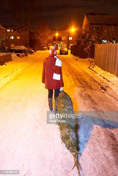 woman dragging christmas tree at night - dragging stock pictures, royalty-free photos & images