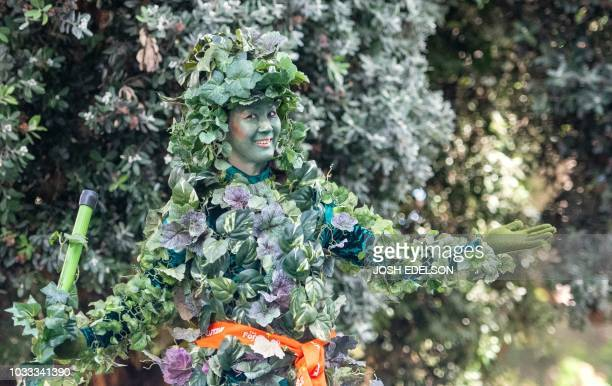 TOPSHOT A woman dressed as a tree stands in front of foliage on a residential street during the Global Climate Action Summit in San Francisco...