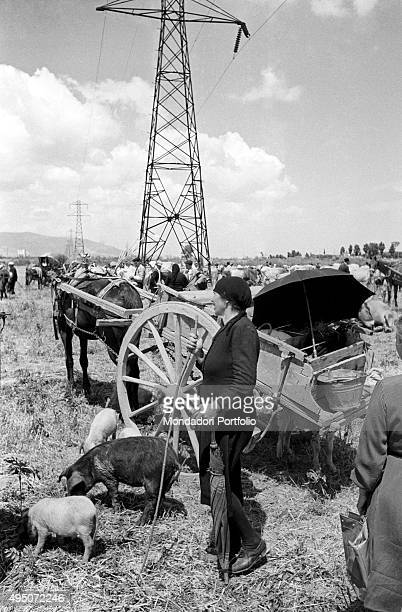A woman dressed in black with an handkerchief on his head is standing near a horsedrawn carriage on the grassy plain where the livestock market of...
