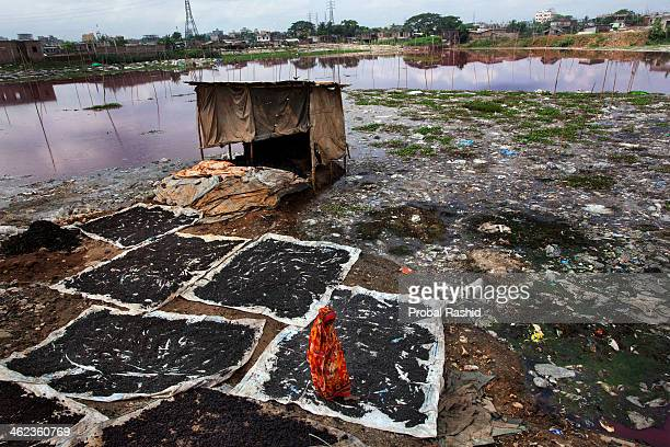 HAZARIBAGH DHAKA BANGLADESH A woman dries the waste from tanneries Dhaka's Hazaribagh area widely known for its tannery industry has been listed as...