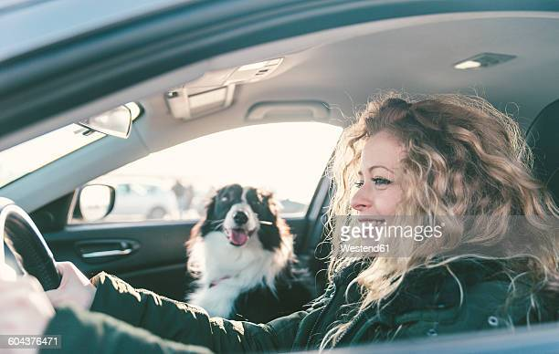 Woman driving car, dog sitting on passenger seat