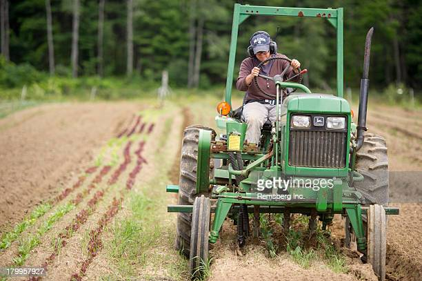 CONTENT] Woman driving tractor with cultivators on organic farm Freeport ME