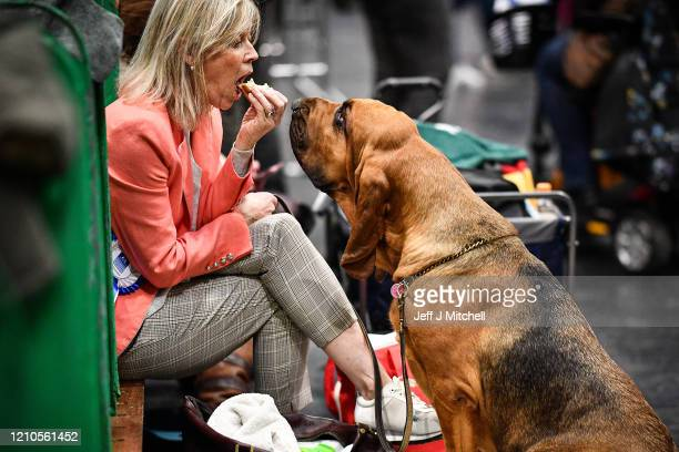 A woman eats her sandwich on day one of Crufts 2020 at the National Exhibition Centre on March 5 2020 in Birmingham England Crufts the world's...