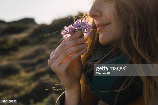 woman enjoying fragrance of a flower - smelling stock pictures, royalty-free photos & images