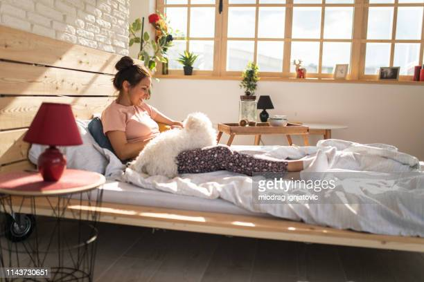 Woman enjoying in bed with Maltese dog