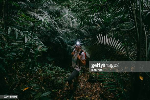 woman enjoying jungle hike, okinawa, japan - reality fernsehen stock pictures, royalty-free photos & images