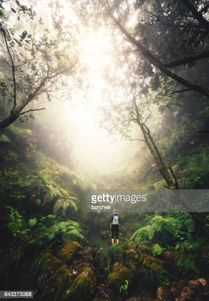 woman enjoying the beautiful outdoors - madeira stock photos and pictures