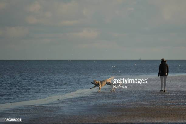 Woman enjoys a New Year's day stroll with dogs on Sandymount Strand in Dublin, during the Covid-19 level 5 lockdown. The Department of Health...