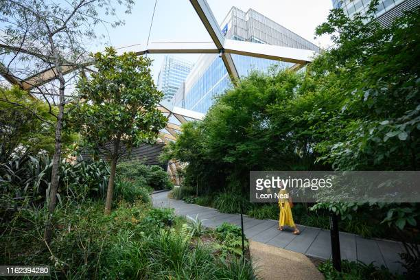 A woman enjoys the lush greenery of the Crossrail Place roof garden at Canary Wharf on July 16 2019 in London England On July 22 London will...