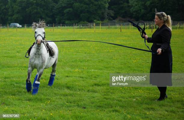 A woman exercises her horse during the Duncombe Park Country Fair on May 28 2018 in Helmsley England Set in the grounds of one of Yorkshire's most...