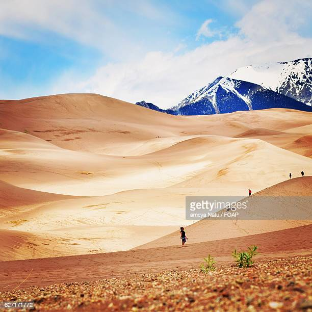 woman exploring sand dunes - file:sand_dunes.jpg stock pictures, royalty-free photos & images