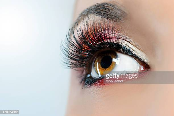 woman eye macro - false eyelash stock pictures, royalty-free photos & images