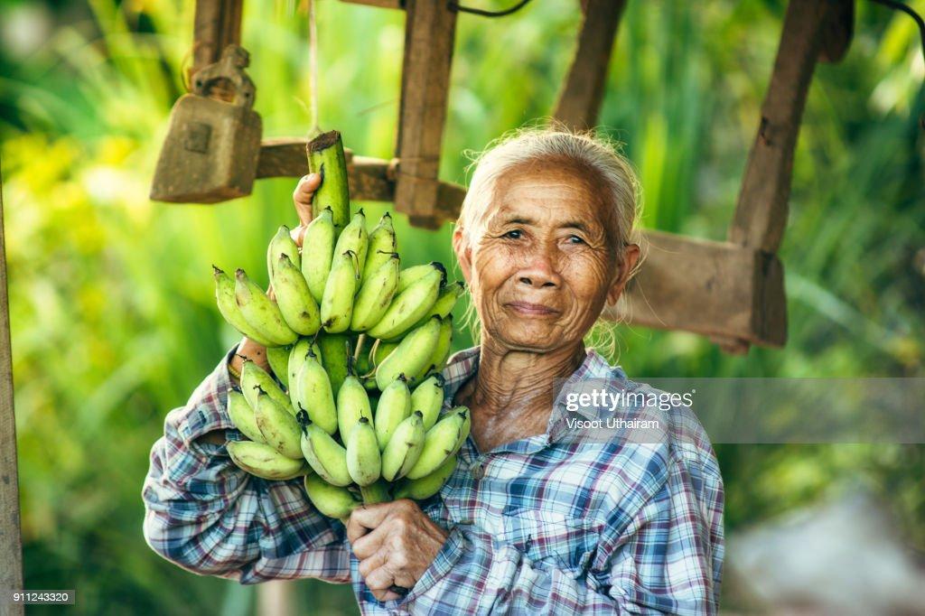 Woman farmer holding green banana : Stock Photo
