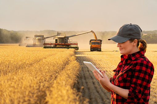 Woman farmer with digital tablet 1148006026