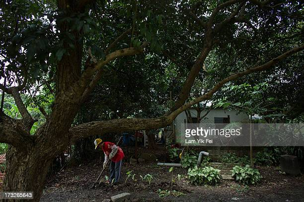 A woman farms outside her home in Shi Po Village on July 11 2013 in Hong Kong China The North East New Territories New Development Areas project...