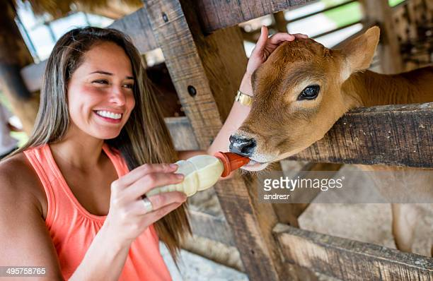 Woman feeding a calf