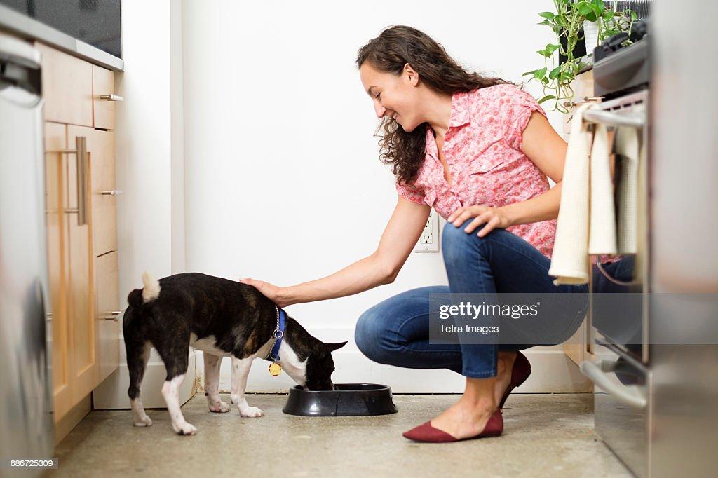 Woman feeding dog in kitchen : Stock Photo