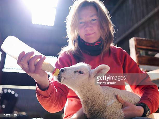 Woman feeding lamb with bottle