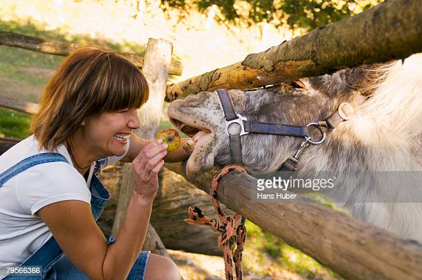 Woman feeding pony