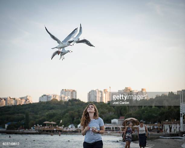 woman feeding seagulls in odessa, ukraine - odessa ukraine stock photos and pictures
