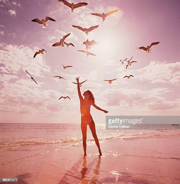 Woman feeding seagulls