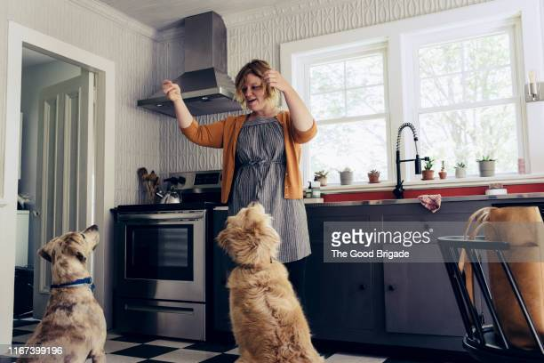 woman feeding treats to dogs in kitchen - indulgence stock pictures, royalty-free photos & images