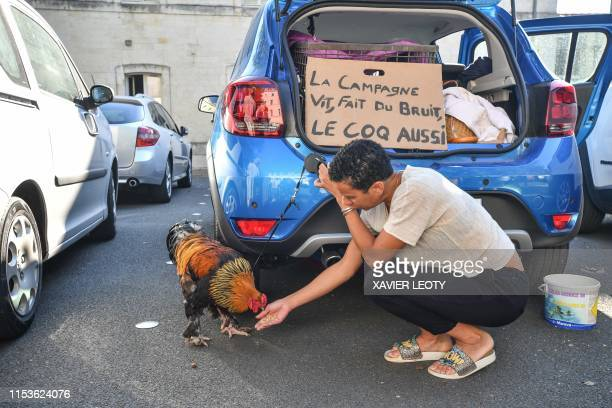 A woman feeds a rooster in front of a banner reading the countryside lives makes noise cockerel as well in Rochefort western France on July 4 2019...