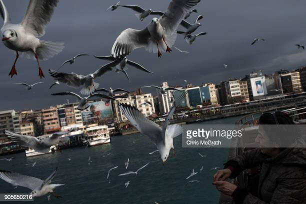 A woman feeds seagulls from a ferry crossing the Bosphorus on January 16 2018 in Istanbul Turkey